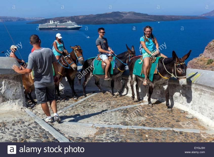 esel-touristen-die-auf-der-strasse-die-vom-hafen-in-die-stadt-thira-santorini-griechische-insel-kykladen-griechenland-europa-eygj3h
