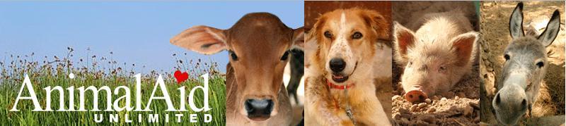 animal aid unlimited new header.
