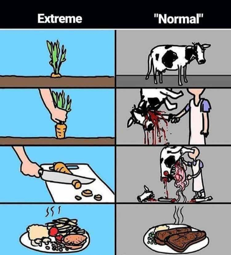 Extreme-Normal Karikatur