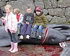 Kinder sitzen auf Wal Faröerjpg