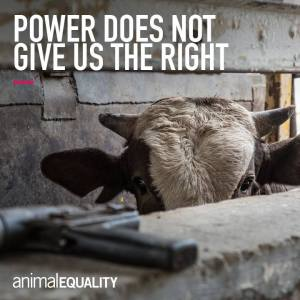 POwer gives not us the right