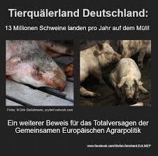 Tierquälerland Deutschland