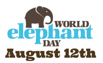 world elephant day 1