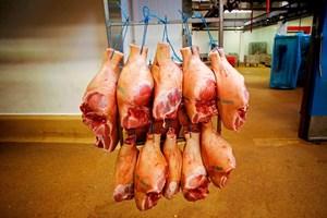 hängende Fleischkörper