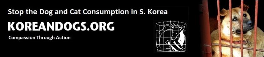 korean dogs header