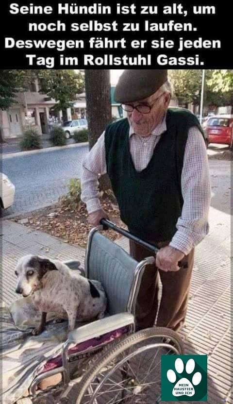 Alter Mann mit Hündin im Rollstuhljpg