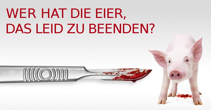 facebook_vorschaubild