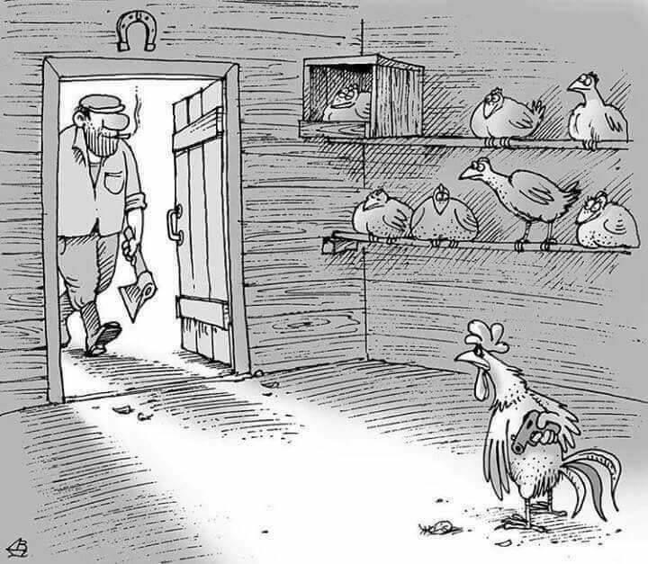 Karikatur-Hühne in Stall_n