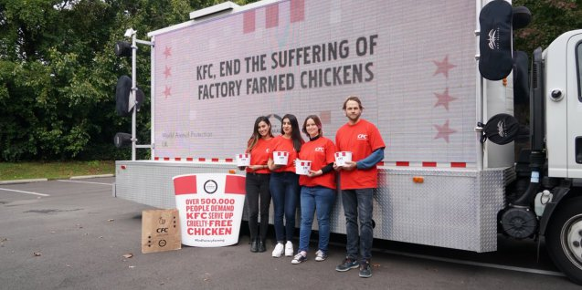 KFC petition
