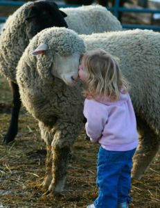 kleines Mädchen mit Schaf
