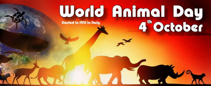 World animal day 2