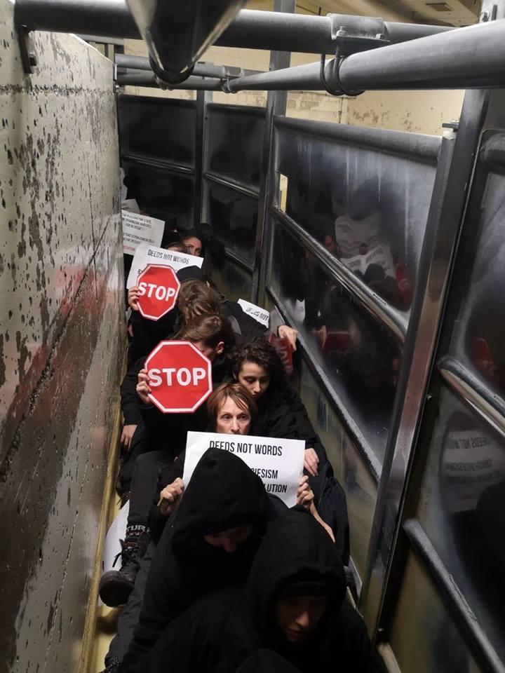 Aktivisten von 269Lifejpg