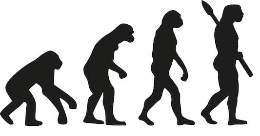 Evolution_2