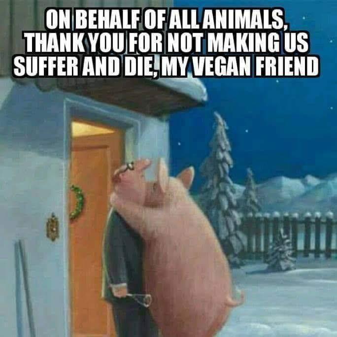 Im Name der Tiere bedankt sich ein Schwein beim Veganen