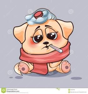 hund-ist-krank-69248789