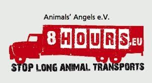 8 hours logo