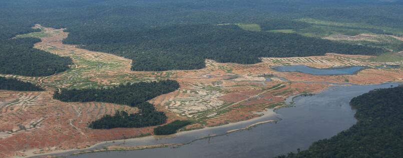 abgeholte flächen in brasilienjpg