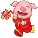 C pig 9