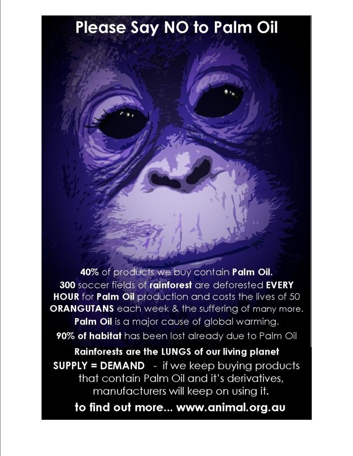 palm oil 3.jpg