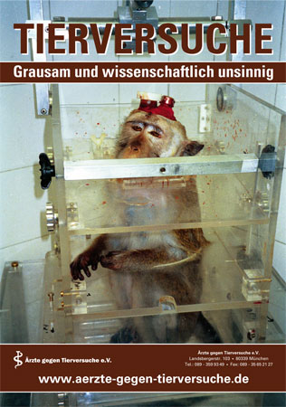 poster_primatenstuhl