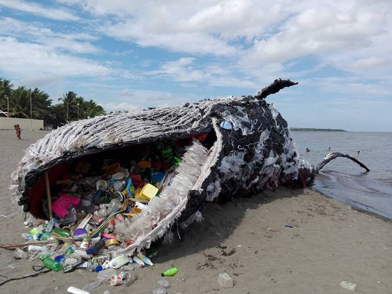 plastic whale trash
