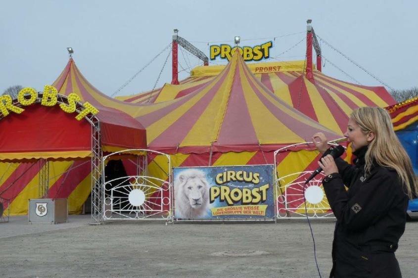 roncali cirkuspg