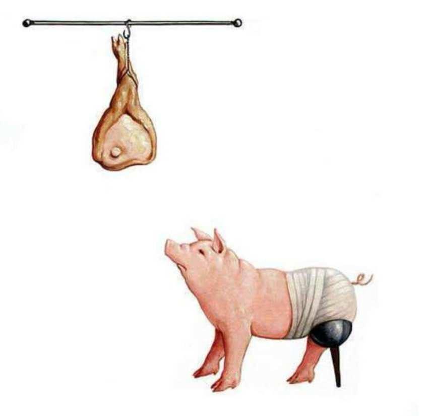 Schwein ohne Bein-Karikaturpg