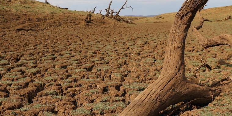 Suedliches-Afrika-leidet-unter-Dürrejpg