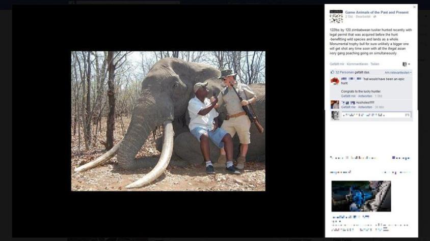 deutsche jäger erlegt elephantenjpg