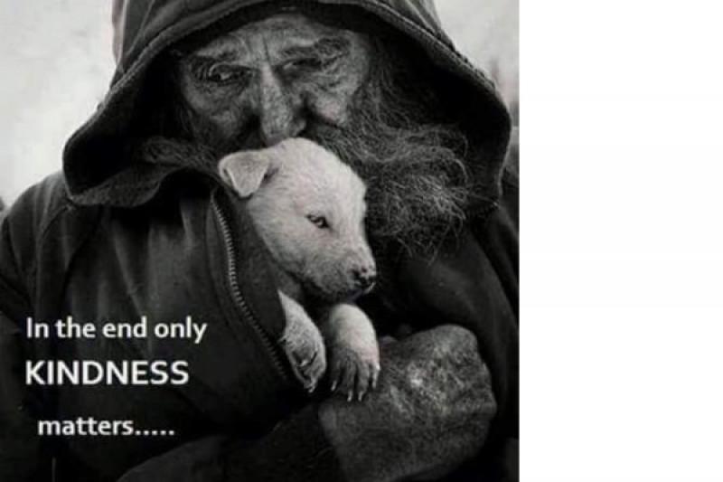 homeless pperson dog 3