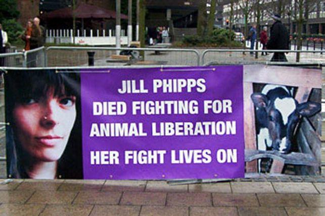 Jill-Phipps_5