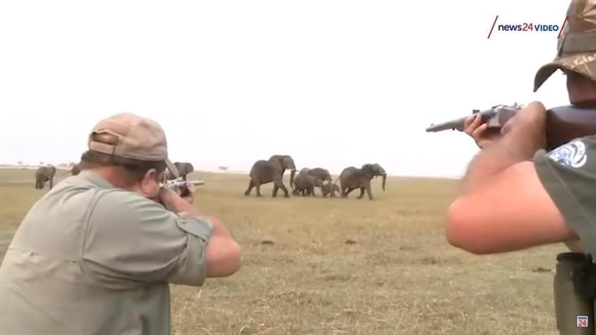 elefantenjagd-222