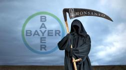 gegen Monsanto pg