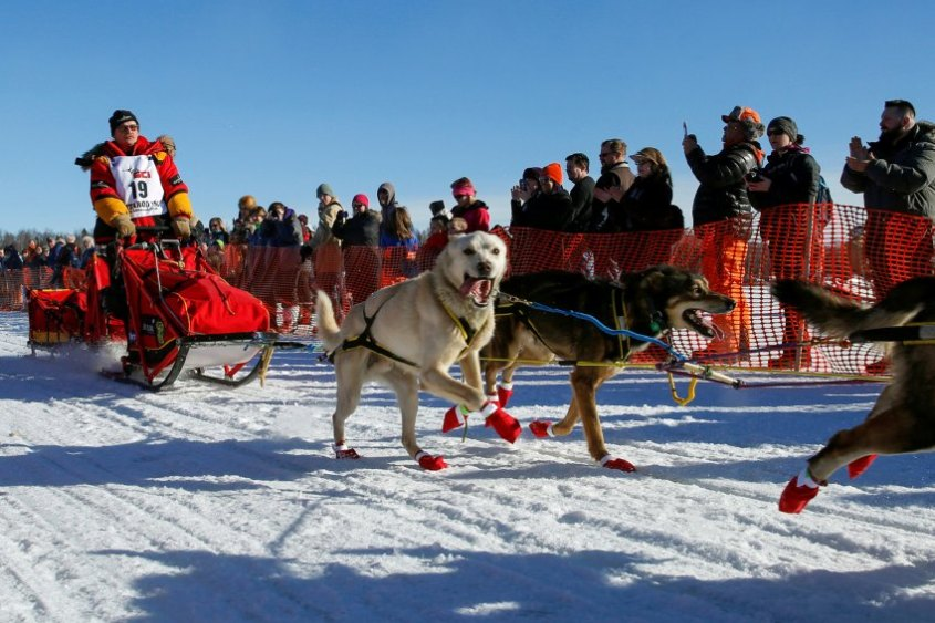 FILE PHOTO: Mitch Seavey's team leaves the start chute at the restart of the Iditarod Trail Sled Dog Race in Willow, Alask
