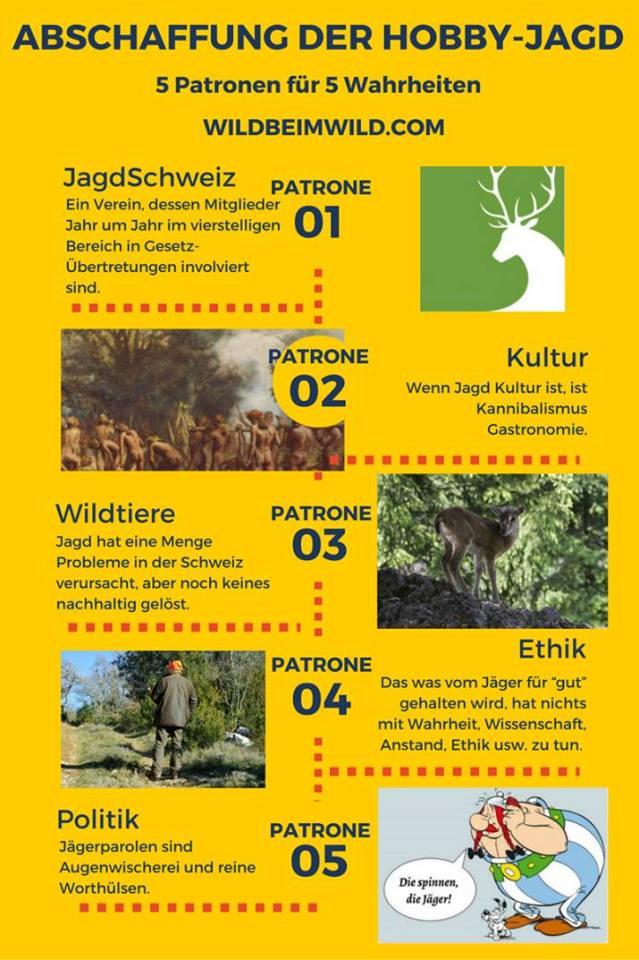 Jagd-Schweiz. Flyerpg