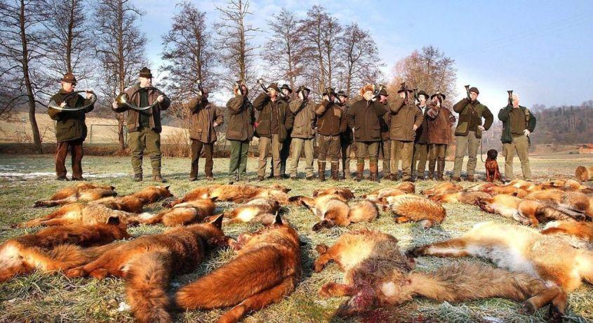 Jäger mit toten Füchsen