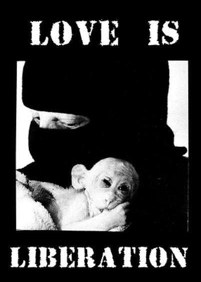 Love is Liberation ALF_n