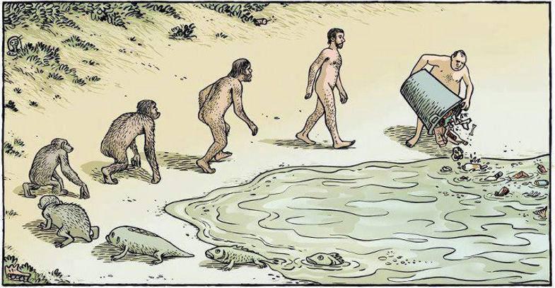 schöne evolutions karikatur