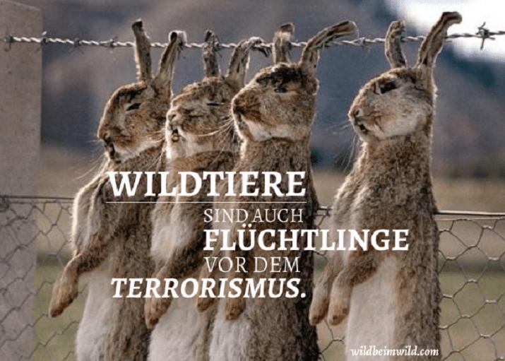der-terrorist-im-jäger