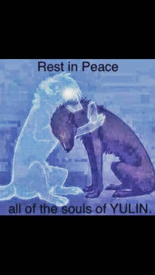Yulin Foto