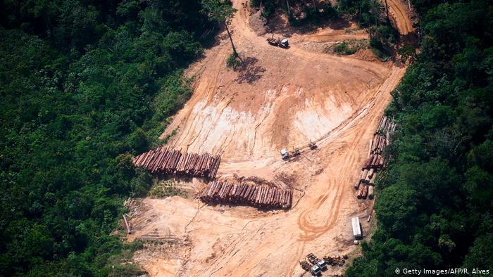 Abholzung in Brasilienpg