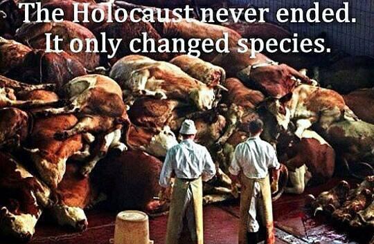 holocaustpg