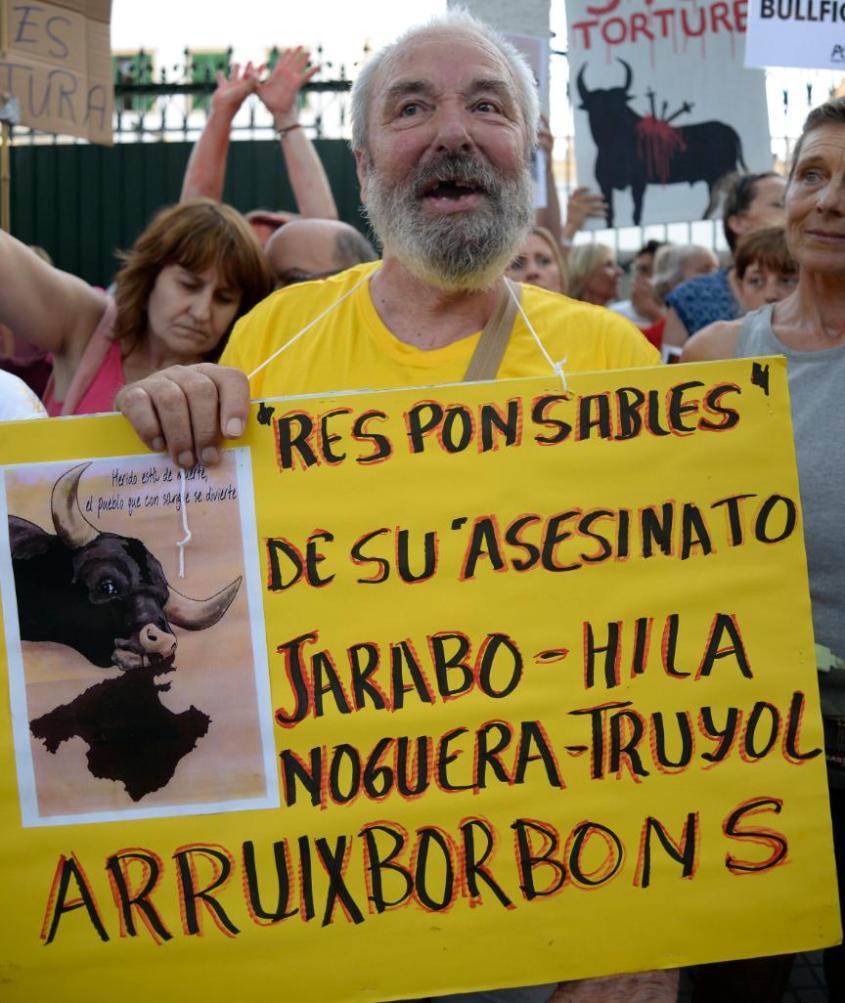 aktivist im Mallorca pg