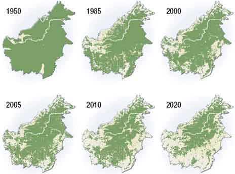 Amazonas.Tabelle jpg