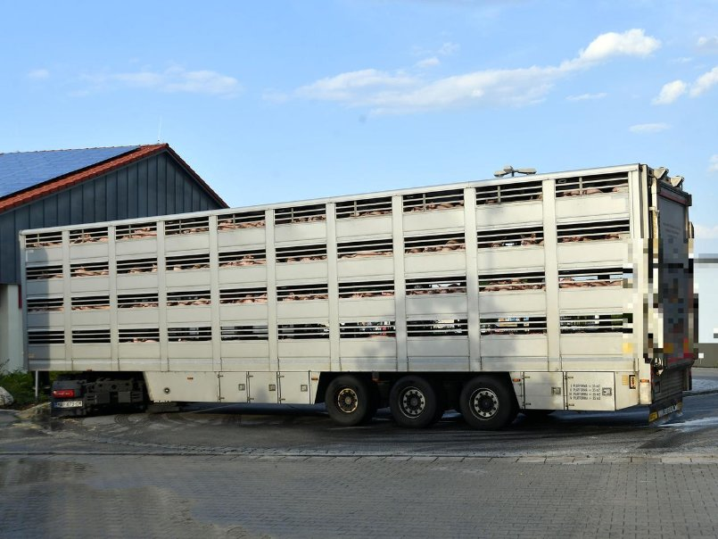 Truckpg