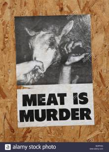 an-animal-rights-poster-pg
