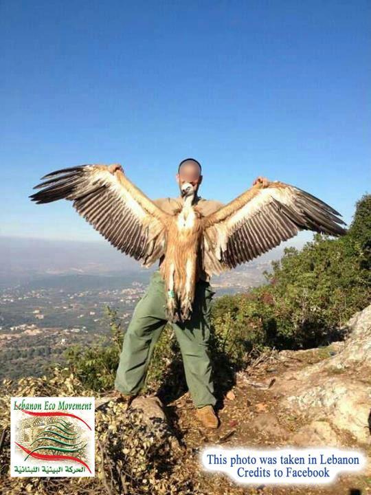 hunting-in-lebanon