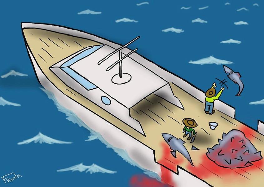 karikatur über Haienjpg