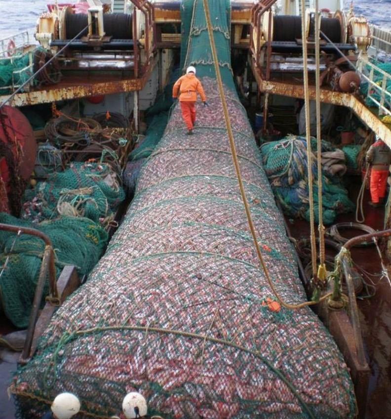 lia chinesisches Schiff