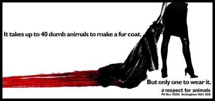 dumb animals fur coat